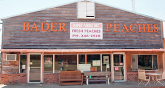 Bill Bader's Peaches in SouthEast Missouri