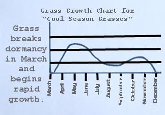 Lawn Fertilization - Cool Season Grass Growth Chart