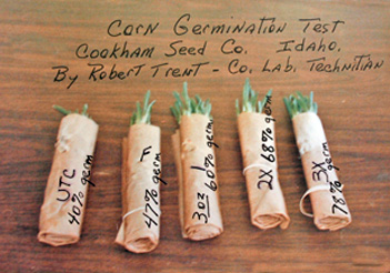 Cookham Seed Co Germination Test