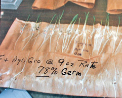Corn Germination Test Results 9oz Agrigro