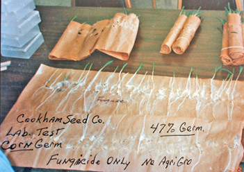 Corn Germination Test Results Fungicide Only