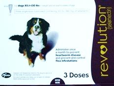 Revolution Flea Medicine for Dogs
