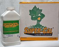 Super-Cal Liquid Calcium