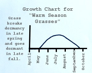 Lawn Fertilization - Warm Season grass Growth Chart