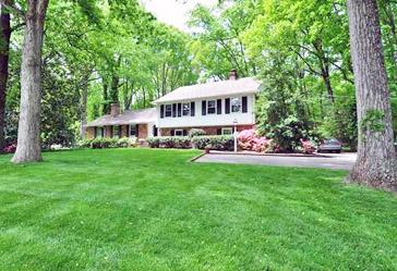 Fescue Lawn Built by Homeowner Alexander Crump