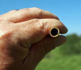 Partially Filled Mason Bee Tube