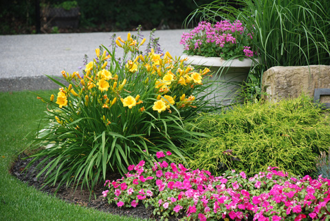 Beautiful Lawn and Garden
