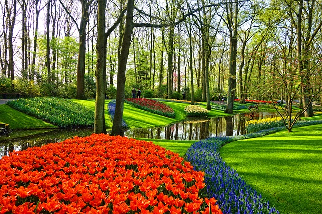 Beautiful Garden and Stream