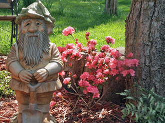 Small Flower Garden with Garden Gnome