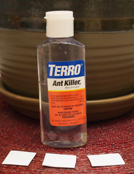 Terro Ant Killer Dropper Bottle
