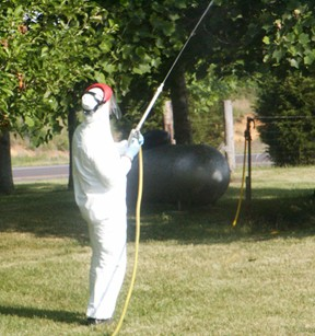 Personal Protection Equipment (PPE) When Tree Spraying