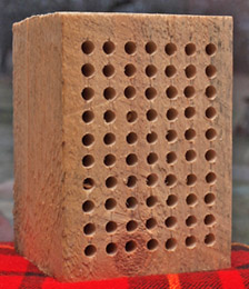 Large Wood Block for Mason Bees