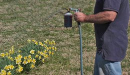 Chapin Hose-End Sprayer