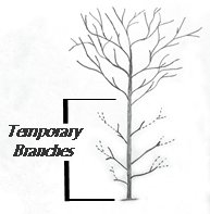 Tree Drawing Showing Temporary Branches
