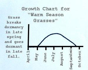 Lawn Fertilization - Warm Season grass Growth Chart