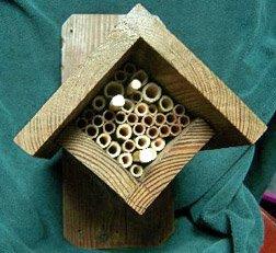 Diamond Shaped Mason Bee House