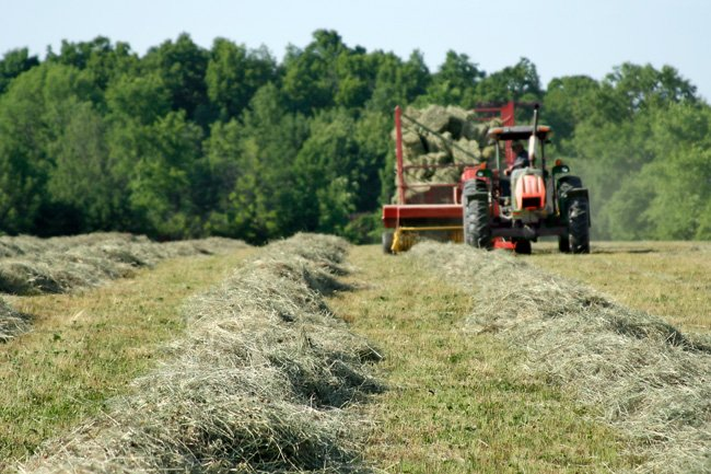 Grass Being Baled