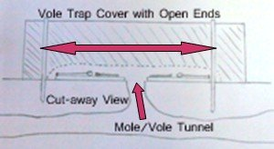 Cover for Vole Traps